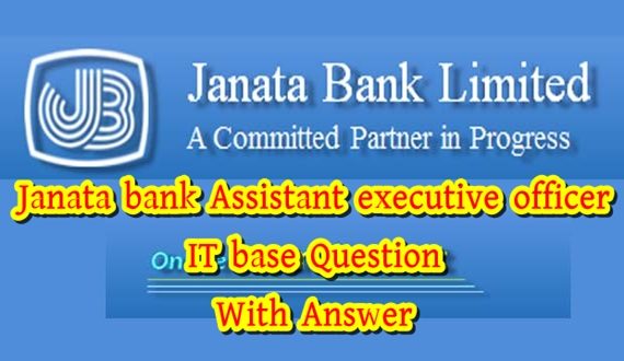 Bank IT Officer/Executive Exam Question Paper with Answer(PDF)